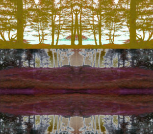 III. A digitally manipulated image of yellow trees on the bank of a body of water above black and grey trees and a fractal-like segment of reds and maroons.