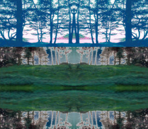 V. A digitally manipulated image of blue trees on the bank of a body of water above black and grey trees and a fractal-like segment of greens.