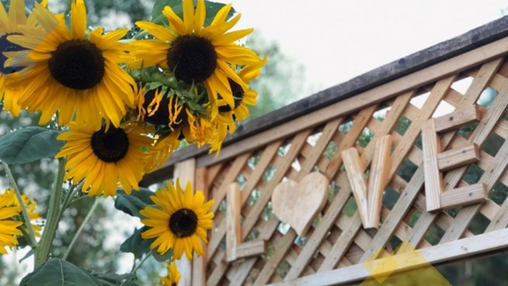 """Sunflowers grow at the entrance to a garden with the word """"love"""" carved overhead."""